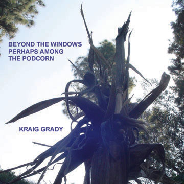 BEYOND THE WINDOWS COVER